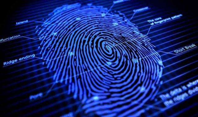 全球指纹芯片公司出货排名:汇顶第一,思立微第五