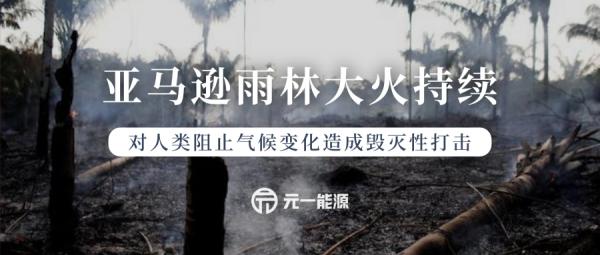 """亚马逊雨林大火持续 气候变化影响""""地球之肺""""安危"""