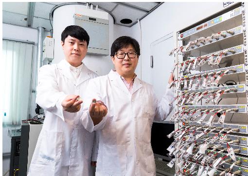 电池,锰基正极材料,钴,镍,香港城市大学,电池容量